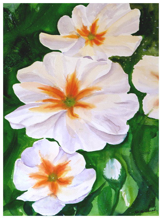 Primroses :: Watercolour 40cm x 30cm