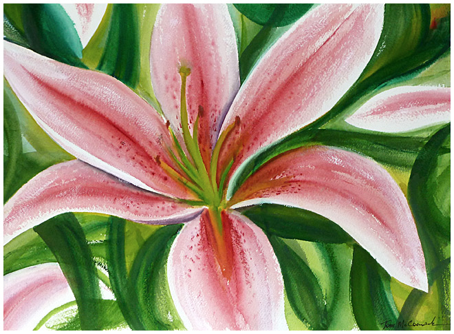 Tiger Lily :: Flowers Watercolour 41mm x 31mm